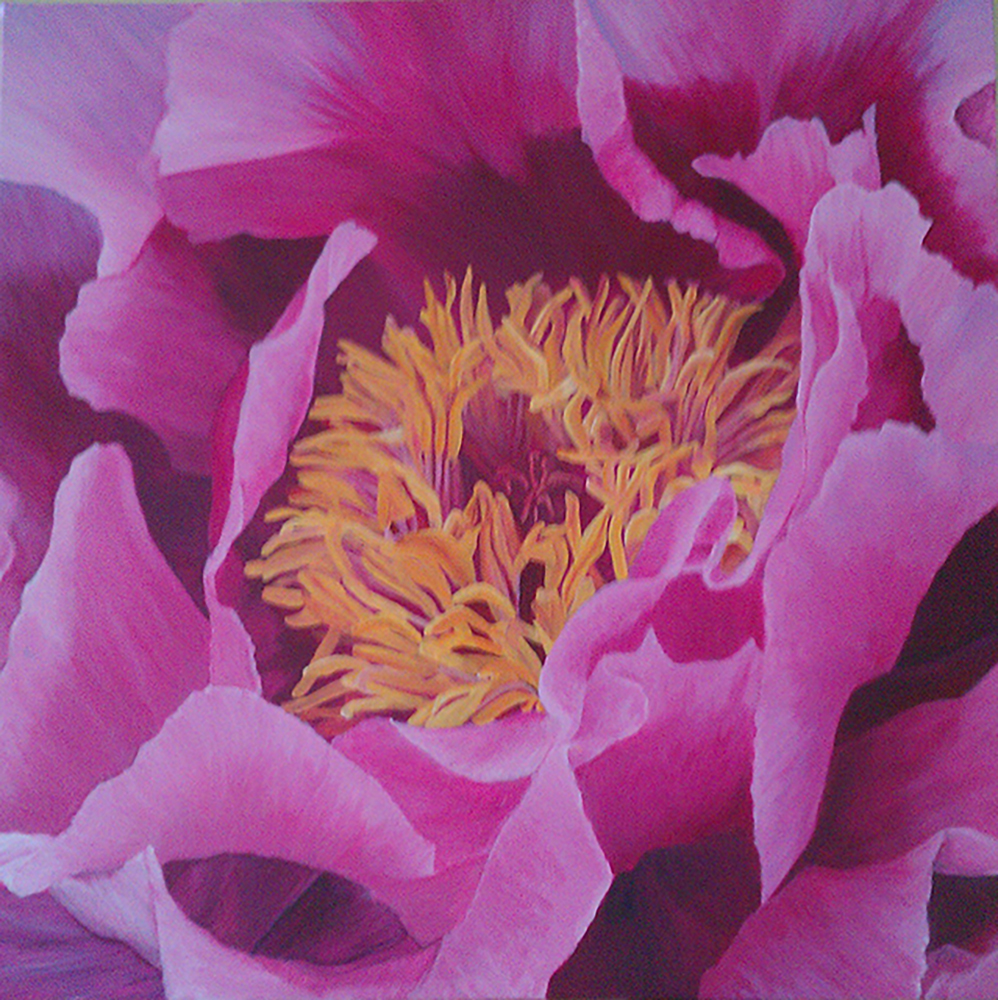 Pink peony acrylic painting